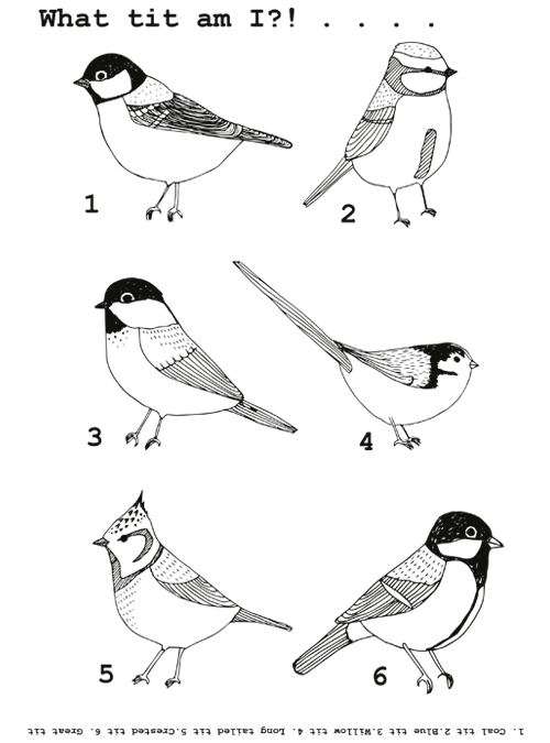Tits colouring in sheets